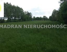 Działka na sprzedaż, Cedrowice, 9844 m²