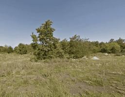 Działka na sprzedaż, Dołuje, 3392 m²