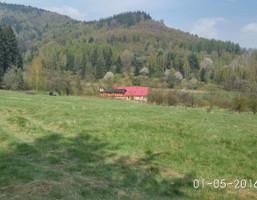 Działka na sprzedaż, Wambierzyce, 25000 m²