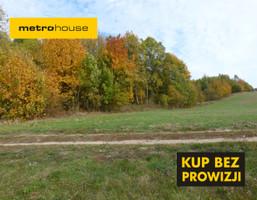 Działka na sprzedaż, Wysoka Wieś, 36564 m²