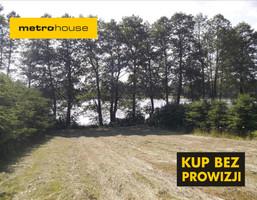 Działka na sprzedaż, Rudzienice, 3000 m²