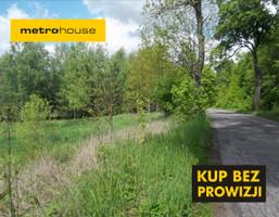 Działka na sprzedaż, Dobrzyki, 3000 m²