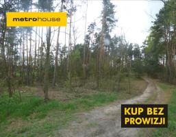 Działka na sprzedaż, Jagodne, 9037 m²