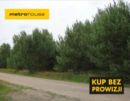 Działka na sprzedaż, Skórka, 5847 m²
