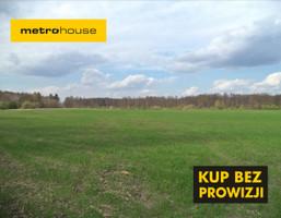Działka na sprzedaż, Ludwinów, 30000 m²