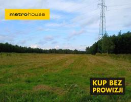 Działka na sprzedaż, Kamieńsk, 6903 m²
