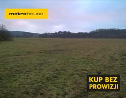 Działka na sprzedaż, Lewiczyn, 43200 m²