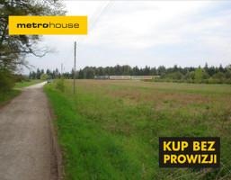 Działka na sprzedaż, Dworzyska, 42100 m²