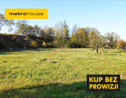 Działka na sprzedaż, Dzierzgoń, 6095 m²