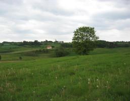 Działka na sprzedaż, Połęczyno, 10100 m²