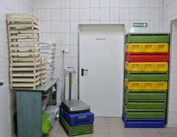 Fabryka, zakład na sprzedaż, Zieleniewo Szczecińska, 550 m²