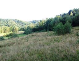 Działka na sprzedaż, Górzanka, 10600 m²