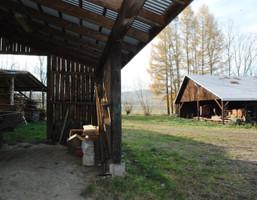 Komercyjne na sprzedaż, Czaszyn, 184 m²