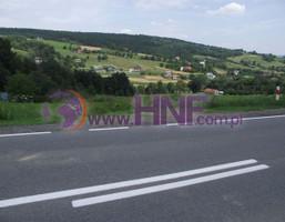 Działka na sprzedaż, Biczyce Górne, 3900 m²