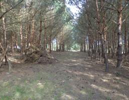 Działka na sprzedaż, Puszczykowo Stroma, 4159 m²