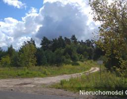 Działka na sprzedaż, Siemianice, 7909 m²