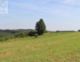 Działka na sprzedaż, Jerzmanowice-Przeginia, 30000 m²