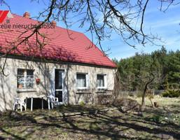 Gospodarstwo rolne na sprzedaż, Warnino Warnino, 130560 m²