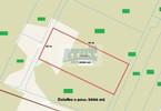 Działka na sprzedaż, Podkowa Leśna Książenicka, 5006 m²