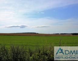Działka na sprzedaż, Brzeźno Lęborskie, 17800 m²