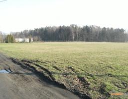 Działka na sprzedaż, Wyry, 7077 m²
