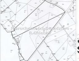 Działka na sprzedaż, Miłoradz, 272173 m²