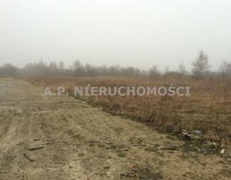 Działka na sprzedaż, Cholerzyn, 10040 m²