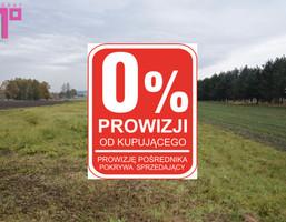 Działka na sprzedaż, Rudziczka Baraniok, 5398 m²