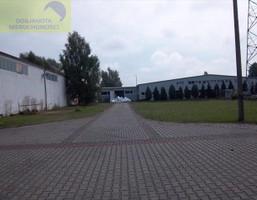 Fabryka, zakład na sprzedaż, Chociejów, 6800 m²