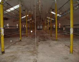 Komercyjne na sprzedaż, Habdzin, 1200 m²