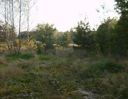 Działka na sprzedaż, Pieńków, 10050 m²