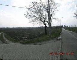 Działka na sprzedaż, Nowa Wieś, 50000 m²