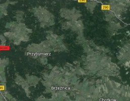 Działka na sprzedaż, Gorzupia Dolna, 84400 m²