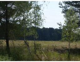 Działka na sprzedaż, Dobroszów Wielki, 110000 m²