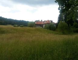 Dom na sprzedaż, Lądek-Zdrój, 280 m²