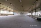 Magazyn do wynajęcia, Zielona Góra, 1300 m²