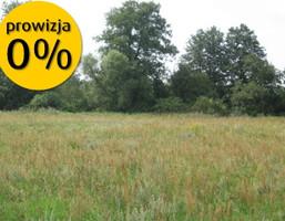 Działka na sprzedaż, Goszczanówko, 13800 m²