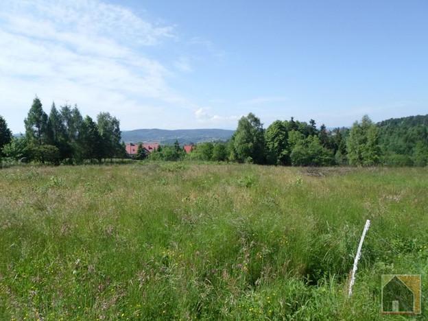 Działka na sprzedaż, Mogilany, 7500 m² | Morizon.pl | 4457