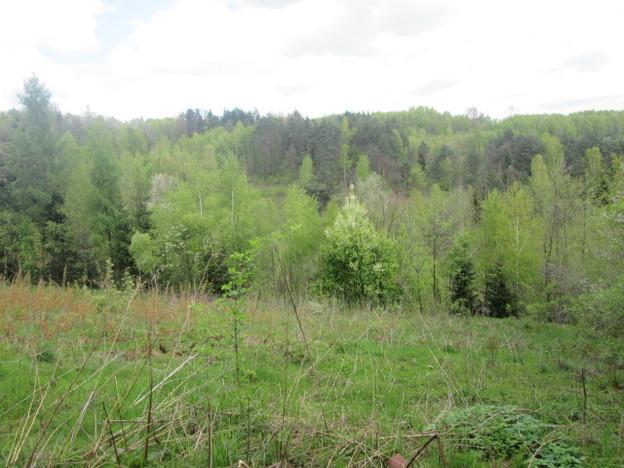 Działka na sprzedaż, Borzęta, 2600 m²   Morizon.pl   1130