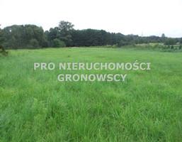 Działka na sprzedaż, Gostyń, 1168 m²