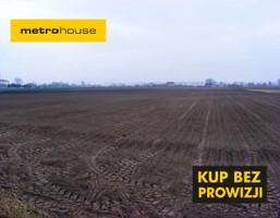Działka na sprzedaż, Guzów, 54800 m²