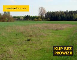 Działka na sprzedaż, Nowy Ludwików, 2300 m²