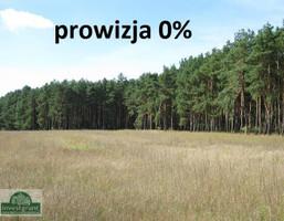 Działka na sprzedaż, Borówno, 39000 m²