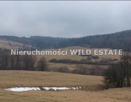 Działka na sprzedaż, Komańcza, 59068 m²