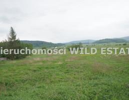 Działka na sprzedaż, Olszanica, 2500 m²