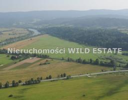 Działka na sprzedaż, Lesko, 470800 m²