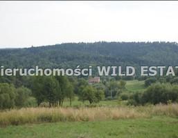 Działka na sprzedaż, Lesko, 26000 m²