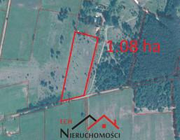 Działka na sprzedaż, Goszczanowiec, 10800 m²