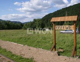 Działka na sprzedaż, Krzywe, 6000 m²
