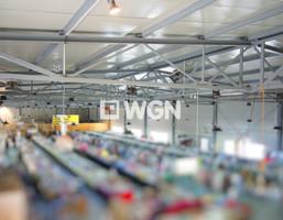 Lokal handlowy do wynajęcia, Tarnów, 100 m²